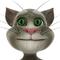 Sprechender Kater Tom - Talking Tom Cat